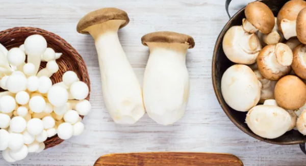 """Mushrooms"" nutritional value, good health"